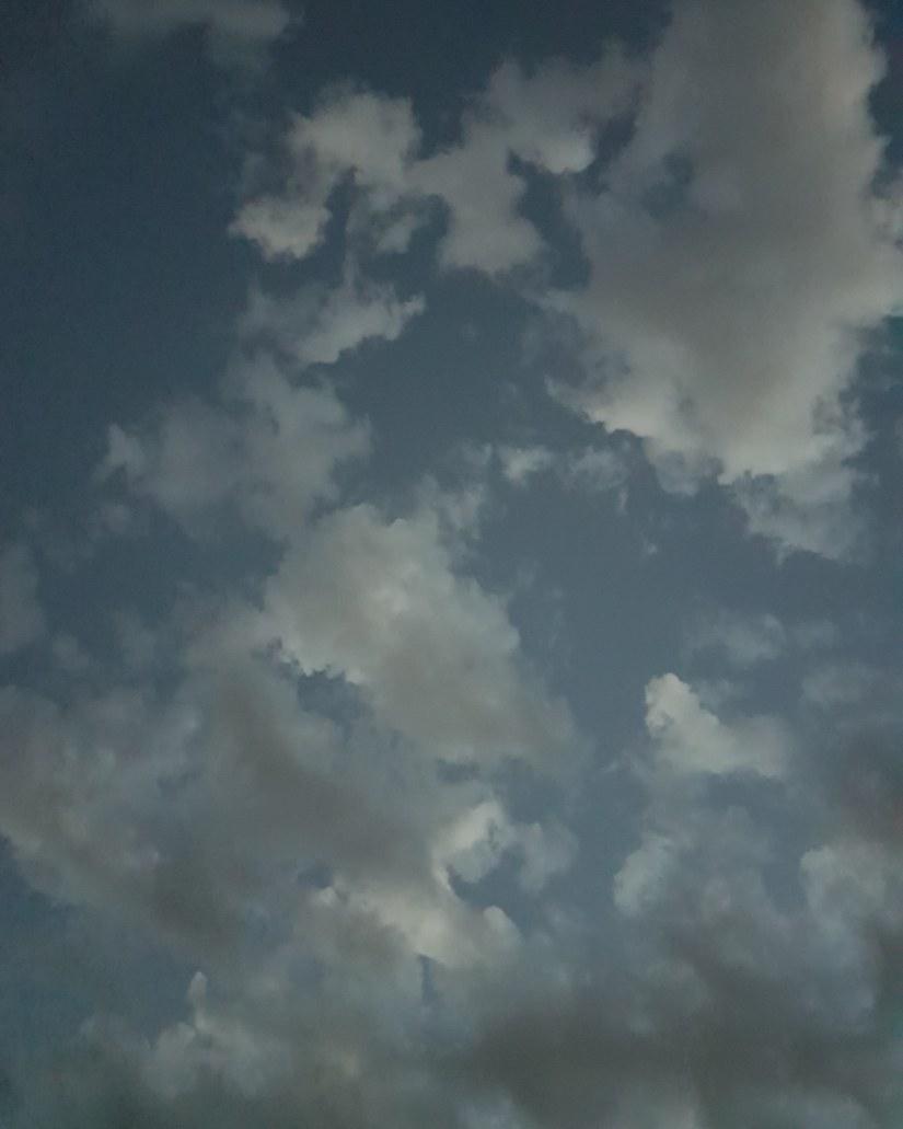 The Disingenuous Sky